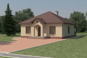 Одноэтажный дом D015